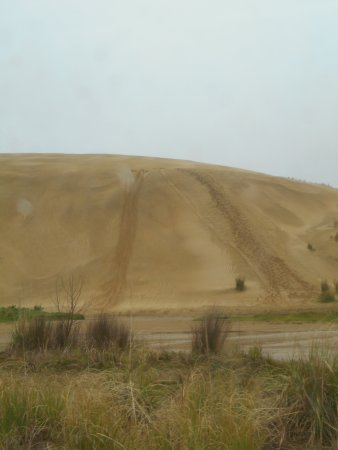 Kaitaia, นิวซีแลนด์: sandhills to climb and hurtle down on boards
