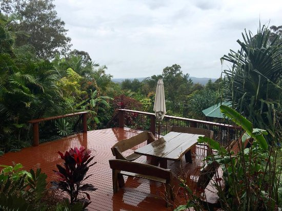 Mooloolah Valley, Αυστραλία: Rainy day on the deck