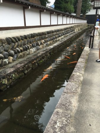 Hida no Takumi Bunka Museum: photo0.jpg