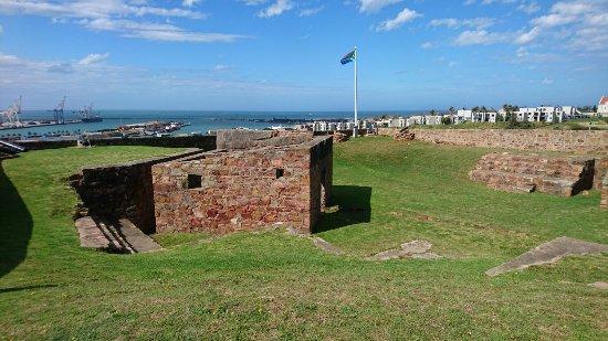 Port Elizabeth, Sudáfrica: DSC_2391_large.jpg