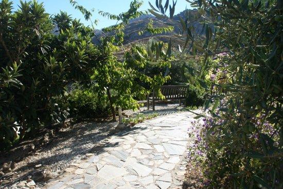 La Almunia del Valle: photo2.jpg