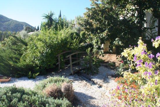 La Almunia del Valle: photo3.jpg