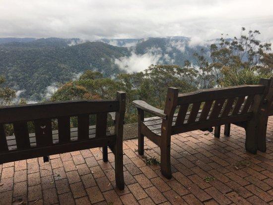 Beechmont, Австралия: photo2.jpg