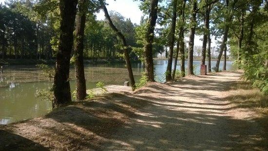 Saint-Felix-Lauragais, Francja: Lac de Lenclas path