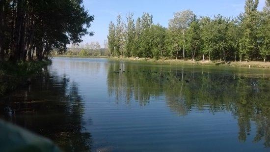 Saint-Felix-Lauragais, Francja: Lac de Lenclas