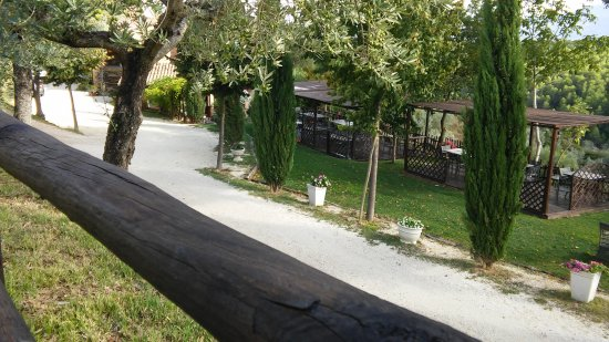 Agriturismo Il Corbezzolo: parco giochi