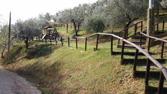 Agriturismo Il Corbezzolo: parco giochi 2
