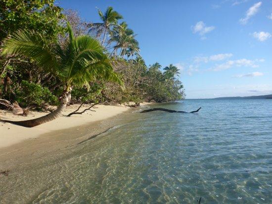 Leleuvia Island, Fiji: The Beach out the front of the Bure (Room)