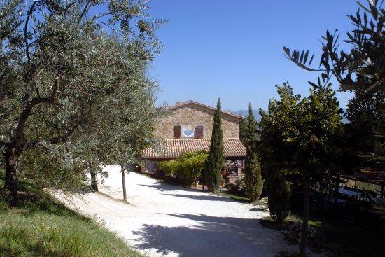 Cantalupo, Italien: est5