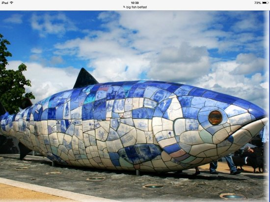 Big fish belfast picture of big fish belfast tripadvisor for Pictures of big fish