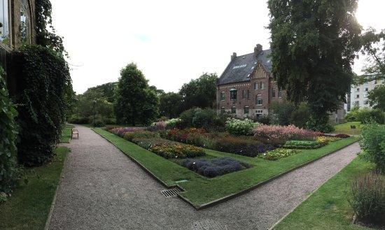 Botaniska trädgården Lund, augusti.