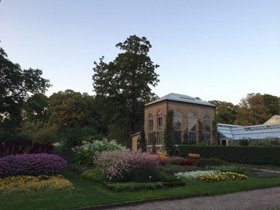 Botaniska trädgården Lund, september.