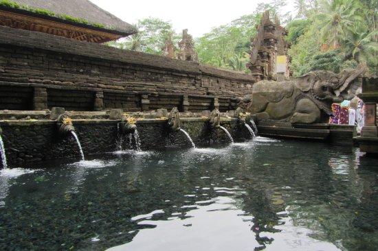Suweca Bali Tour