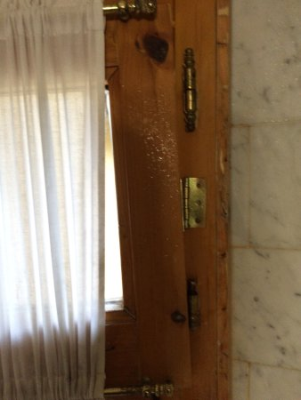 Sesto Fiorentino, Italia: Der schlimmste Aufenthalt unserer Reise! Schimmel im Bad und Kühlschrank, kaputte Fenster und St