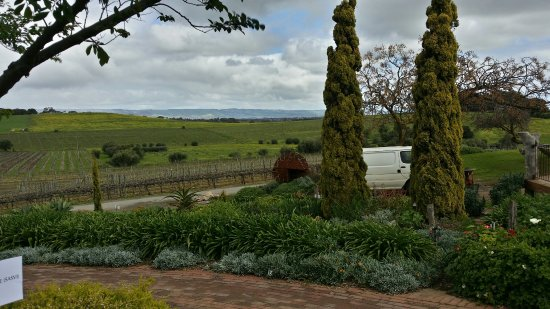 Coriole Winery: Coriole