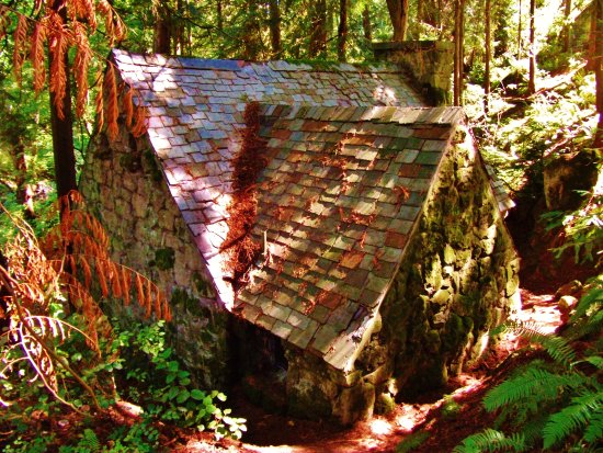 roof of cabin picture of leach botanical garden portland