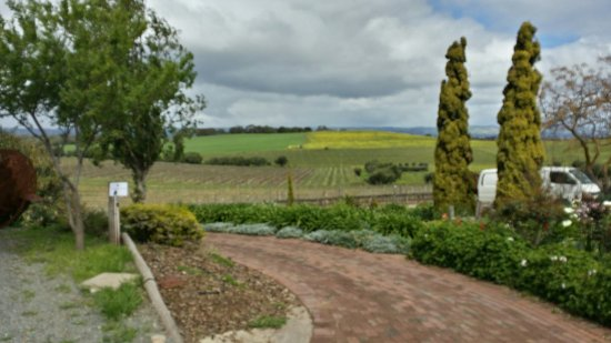 McLaren Vale, ออสเตรเลีย: Coriole