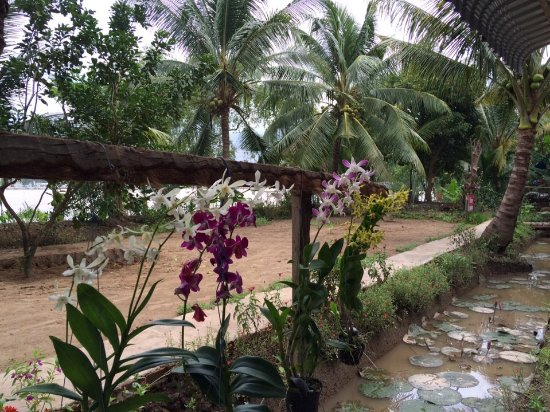 Tien Giang Province, Vietnam: Tiny Garden Homestay in Mekong delta
