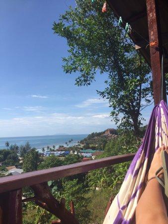 J.B. Hut Bungalows: view from hammock.