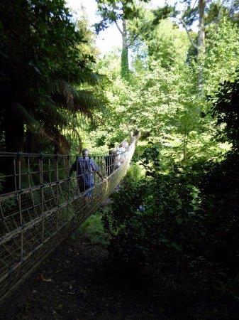 St Austell, UK: Auf der Rope Bridge im Jungle Garden