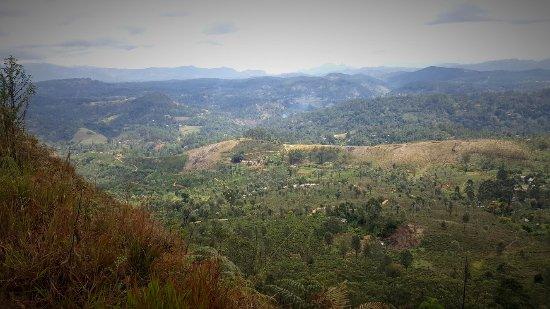 Хапутале, Шри-Ланка: 20160917_101406_large.jpg