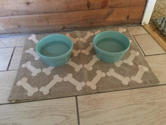 Sundridge, Canada: Dog Dishes Waiting For Us In The Cabin