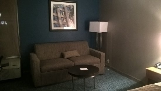 Radisson Hotel Minneapolis/St. Paul North: Couch