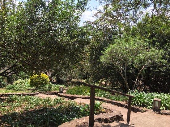 Kigongoni Lodge: photo6.jpg