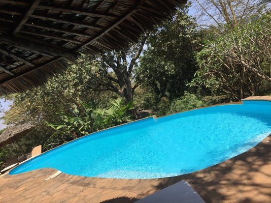Kigongoni Lodge: photo7.jpg