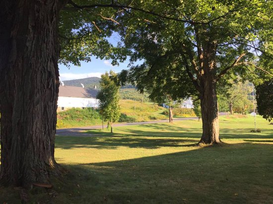 Hobart, NY: View from the picnic bench in the front yard.