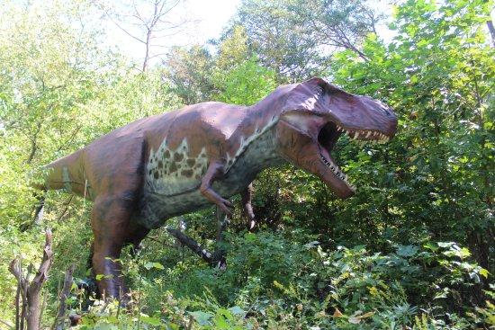 Bluff City, TN: t rex