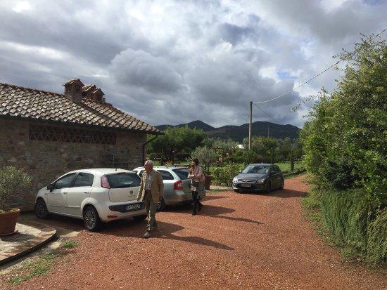 Orciatico, İtalya: Agriturismo Signorini
