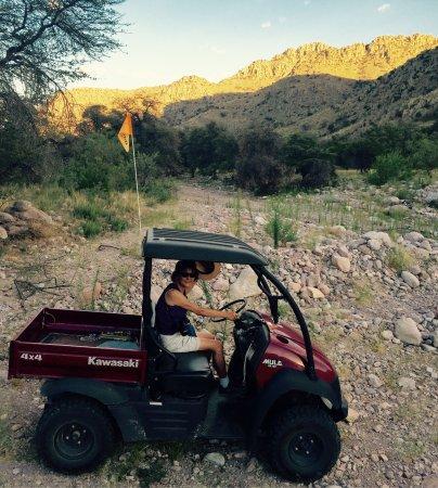Portal, AZ: Great get away!