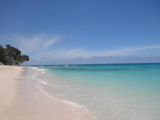 Saint James Parish, Barbados: 4 pallini? E' merito delle tartarughe
