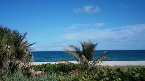 Boca Raton Plaza Hotel and Suites: Nearby beach 5 mins away