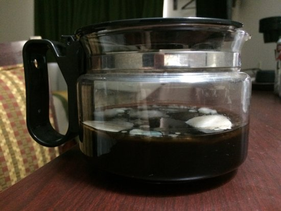 Super 8 Mansfield : Coffee pot filled with mold! Left for us inside room.