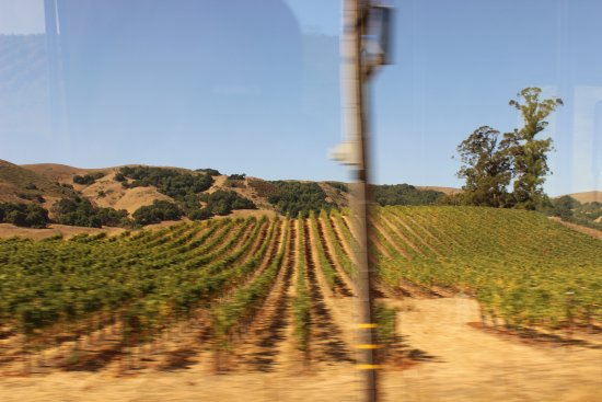 Wine Country Tour Shuttle: this is what you see during your ride