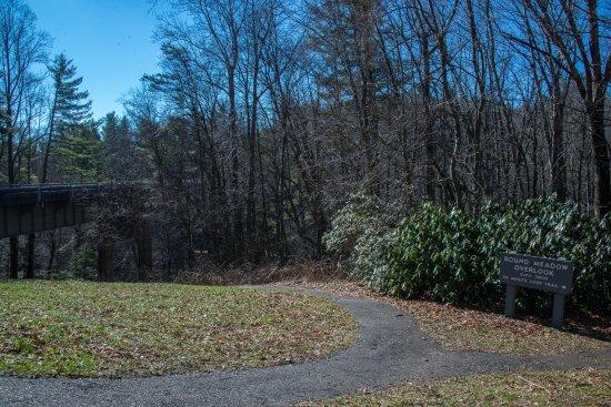 Meadows of Dan, VA: Small picnick spot at the parking area.