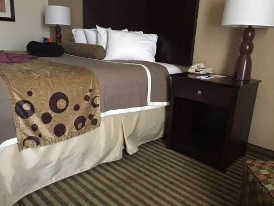 BEST WESTERN PLUS Tucson Int'l Airport Hotel & Suites : hotel room
