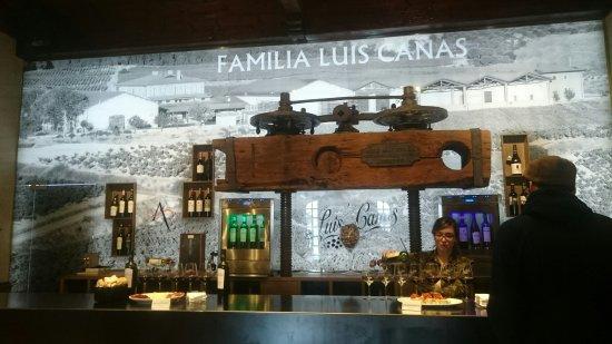 Villabuena de Alava, Испания: Bodegas Luis Canas
