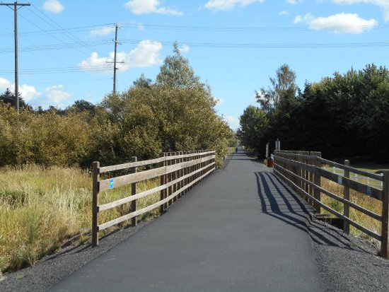 Pullman, WA: The trail crosses a creek several times on bridges like this one.