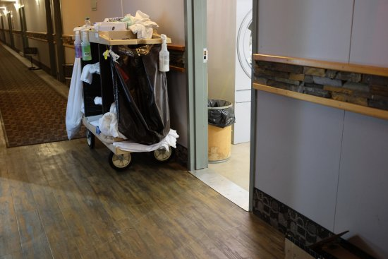 Prestige Hudson Bay Lodge : The view from our door - the noisy linen room and yet another housekeeping trolley.
