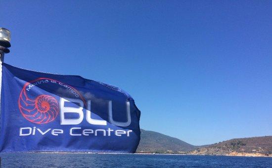 Immagini di marina di campo foto di vacanze a marina di - Dive center blu ...