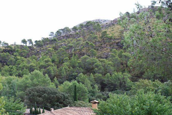 Cuevas de l'Alzinaret: the opposite hillside