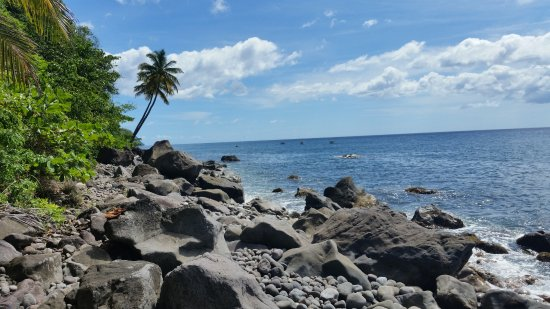 Roseau, Dominica: Plage de galet côte Caraïbe Nord