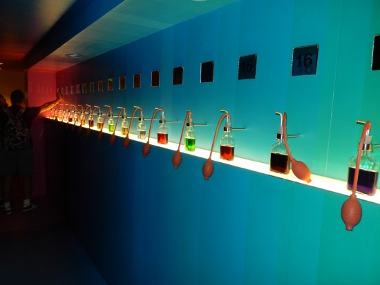 House of Bols, the Cocktail & Genever Experience: House of Bols pic 3