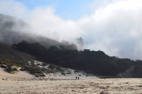 Big Sur Lodge: Pfeiffer Beach