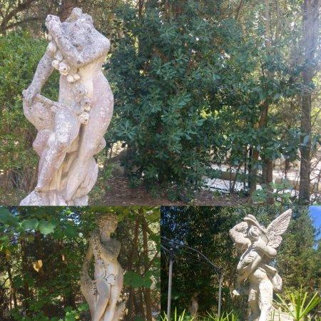 Villa de Giorgi B&B : photo1.jpg