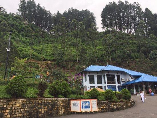 Bluefield Tea Gardens: Bluefield visitor center