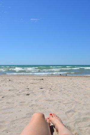 Sandbanks Beach Dog Friendly